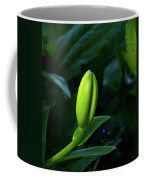 Lilly Bud Coffee Mug