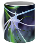 Lilly Flower Purple Coffee Mug