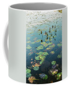 Lilly Pad In Pond  Coffee Mug