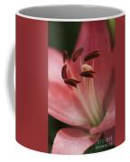 Lilly Pink Craquelure Coffee Mug