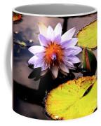 Lillypad In Bloom Coffee Mug