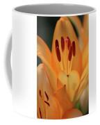 Lily - American Cheerleader 15 Coffee Mug