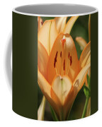 Lily - American Cheerleader 19 Coffee Mug