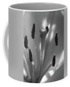 Lily - American Cheerleader 28 - Bw - Water Paper Coffee Mug