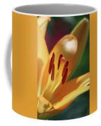 Lily - American Cheerleader 29 Coffee Mug