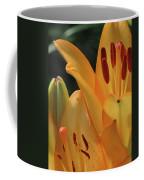 Lily - American Cheerleader 33 Coffee Mug