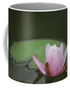 Lily And Pad Coffee Mug