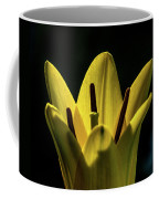 Lily And Sunshine Coffee Mug