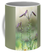 Lily Buds Coffee Mug