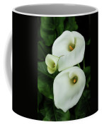Lily Family Coffee Mug