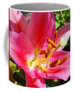 Lily Flower Pink Lilies Giclee Art Prints Baslee Troutman Coffee Mug