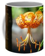 Lily Flowers Art Orange Tiger Lilies Giclee Baslee Troutman Coffee Mug