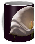 Lily In Shadows Coffee Mug