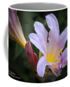 Lily In The Rain By Flower Photographer David Perry Lawrence Coffee Mug