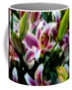 Lily Of The Field Coffee Mug