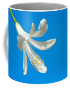 Lily Of The Nile  Coffee Mug