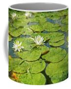 Lily Pad Flowers Coffee Mug