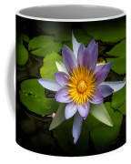 Lily Queen Of The Pond  Coffee Mug