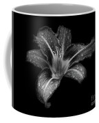 Lily Raindrops In Giverny, France, Black And White Coffee Mug
