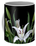 A White Oriental Lily Surrounded Coffee Mug
