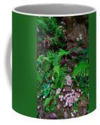 Limberlost Coffee Mug