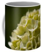 Lime Hydrangea Coffee Mug