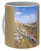 Limestone Pavements And Dry-stone Walls, Fahee North, Burren, County Clare, Ireland Coffee Mug