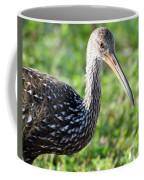 Limpkin Checking For Snails. Coffee Mug