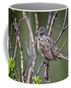 Lincoln's Sparrow Coffee Mug