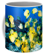 Lined Butterflyfish Coffee Mug