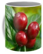 Lingonberries 2 Coffee Mug