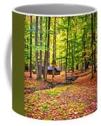 Linn Run Pennsylvania 2 - Paint Coffee Mug