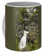 Linville Falls The Upper View Coffee Mug