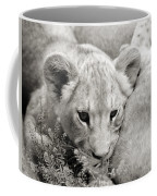 Lion Cub Coffee Mug