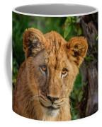 Lioness Cub Coffee Mug