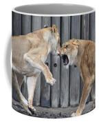 Lioness's Playing 1 Coffee Mug