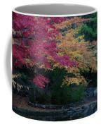Litha Park Ashland Oregon Coffee Mug