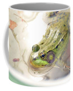 Lithobates Catesbeianus Or Rana Catesbeiana Coffee Mug
