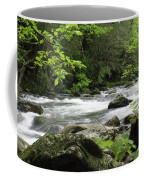 Litltle River 1 Coffee Mug