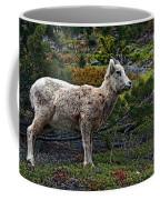 Litte Color Coffee Mug