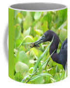 Little Blue Heron Catches A Frog Coffee Mug