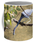 Tricolored Heron Fishing Coffee Mug