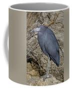 Little Blue In Ormond Coffee Mug