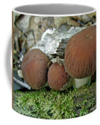 Little Brown Mushrooms In Moss Coffee Mug