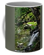 Little Falls Coffee Mug