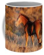 Little Filly Coffee Mug