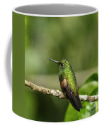 Little Hummingbird Coffee Mug