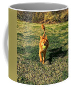 Little Lion Coffee Mug