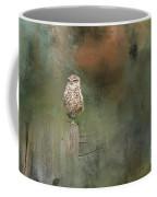 Little Owl On A Fence Coffee Mug