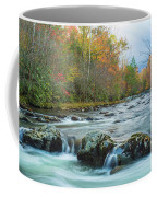 Little Pigeon River Great Smoky Mountains National Park In Fall Coffee Mug